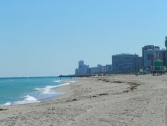 Haulover Beach review